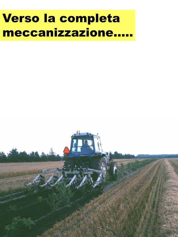 Verso la completa meccanizzazione…..
