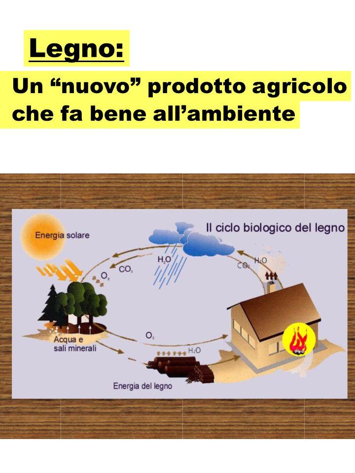 Legno: che fa bene all'ambiente Un nuovo prodotto agricolo