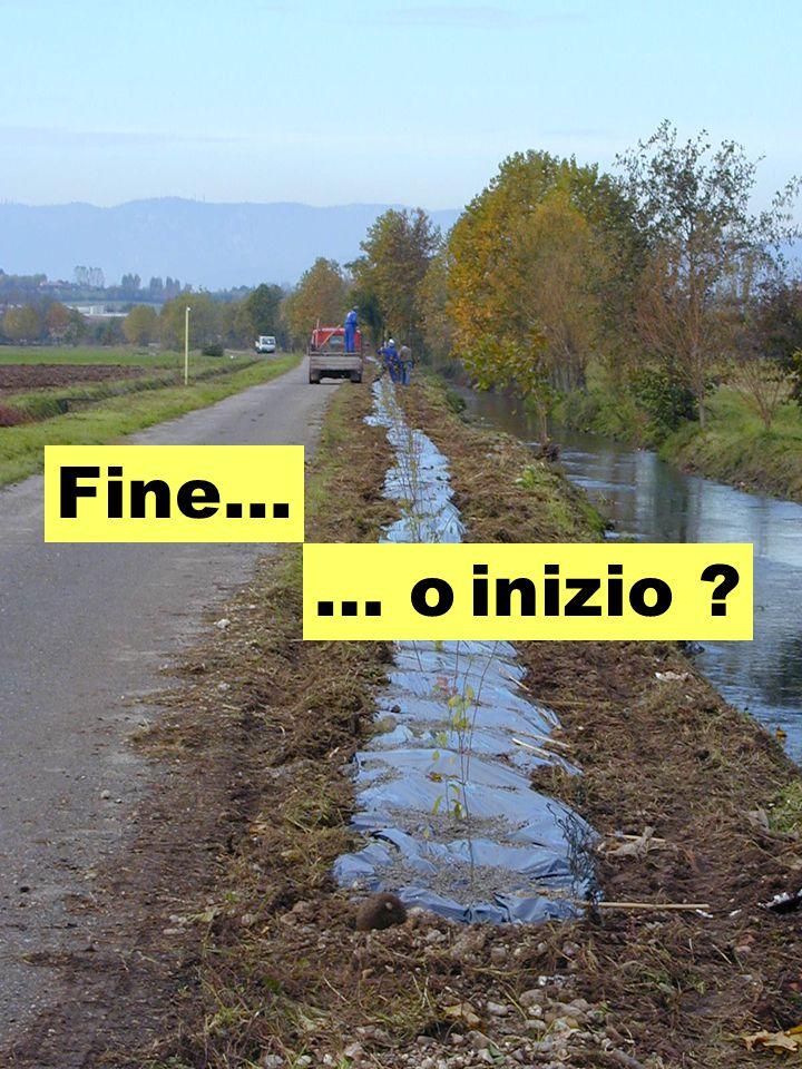 Fine... … o inizio