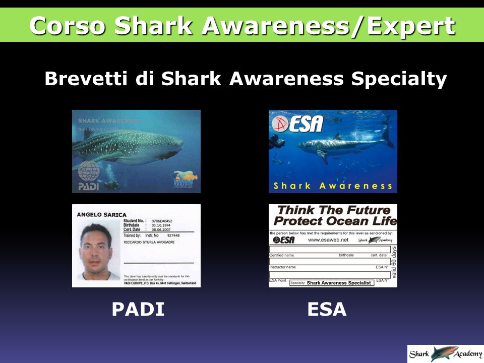 Brevetti di Shark Awareness Specialty PADIESA Corso Shark Awareness/Expert