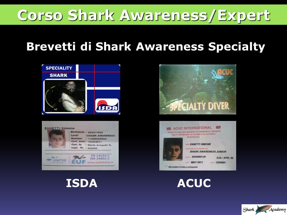 Brevetti di Shark Awareness Specialty ISDAACUC Corso Shark Awareness/Expert