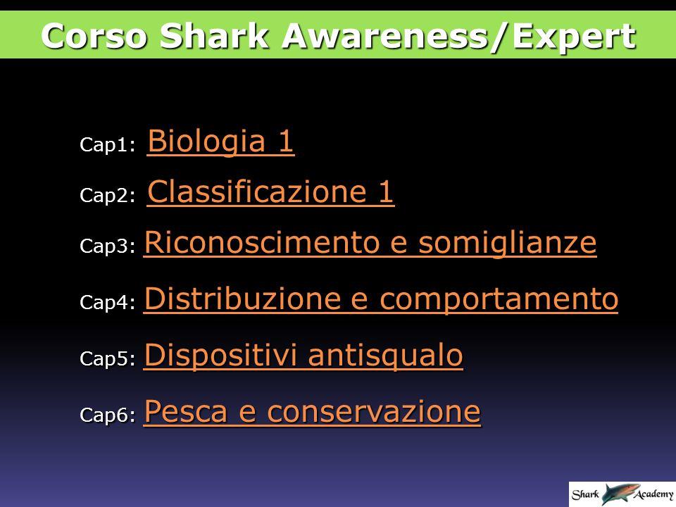Cap1: Biologia 1 Biologia 1Biologia 1 Cap6: Pesca e conservazione Pesca e conservazione Pesca e conservazione Cap3: Riconoscimento e somiglianze Riconoscimento e somiglianze Riconoscimento e somiglianze Cap2: Classificazione 1 Classificazione 1Classificazione 1 Cap5: Dispositivi antisqualo Dispositivi antisqualo Dispositivi antisqualo Cap4: Distribuzione e comportamento Distribuzione e comportamento Distribuzione e comportamento Corso Shark Awareness/Expert