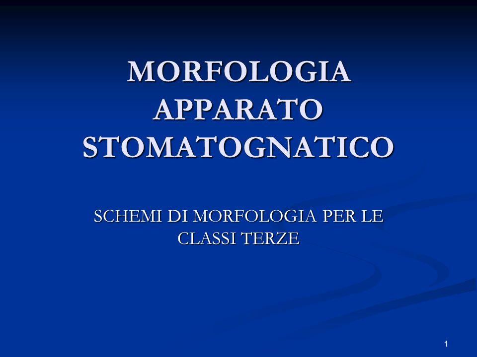 1 MORFOLOGIA APPARATO STOMATOGNATICO SCHEMI DI MORFOLOGIA PER LE CLASSI TERZE