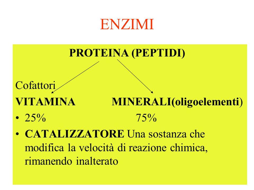 ENZIMI PROTEINA (PEPTIDI) Cofattori VITAMINA MINERALI(oligoelementi) 25% 75% CATALIZZATORE Una sostanza che modifica la velocità di reazione chimica, rimanendo inalterato