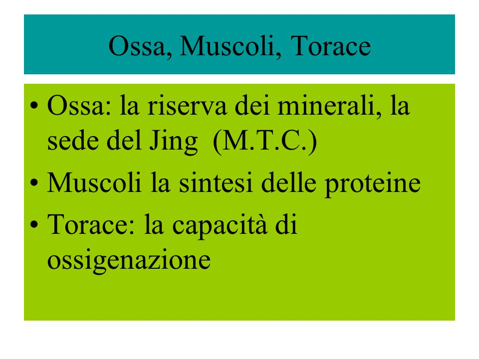 Ossa, Muscoli, Torace Ossa: la riserva dei minerali, la sede del Jing (M.T.C.) Muscoli la sintesi delle proteine Torace: la capacità di ossigenazione