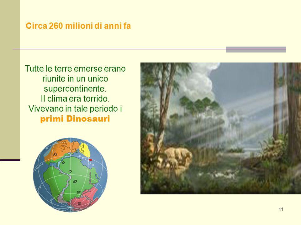 11 Tutte le terre emerse erano riunite in un unico supercontinente. Il clima era torrido. Vivevano in tale periodo i primi Dinosauri. Circa 260 milion