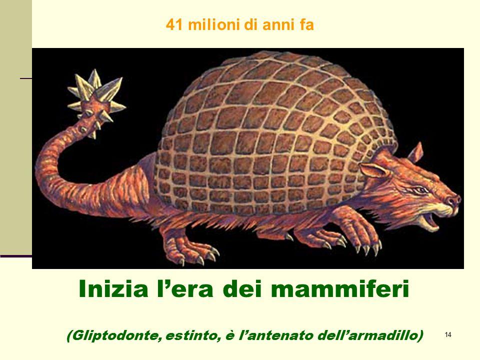 14 Inizia l'era dei mammiferi (Gliptodonte, estinto, è l'antenato dell'armadillo) 41 milioni di anni fa