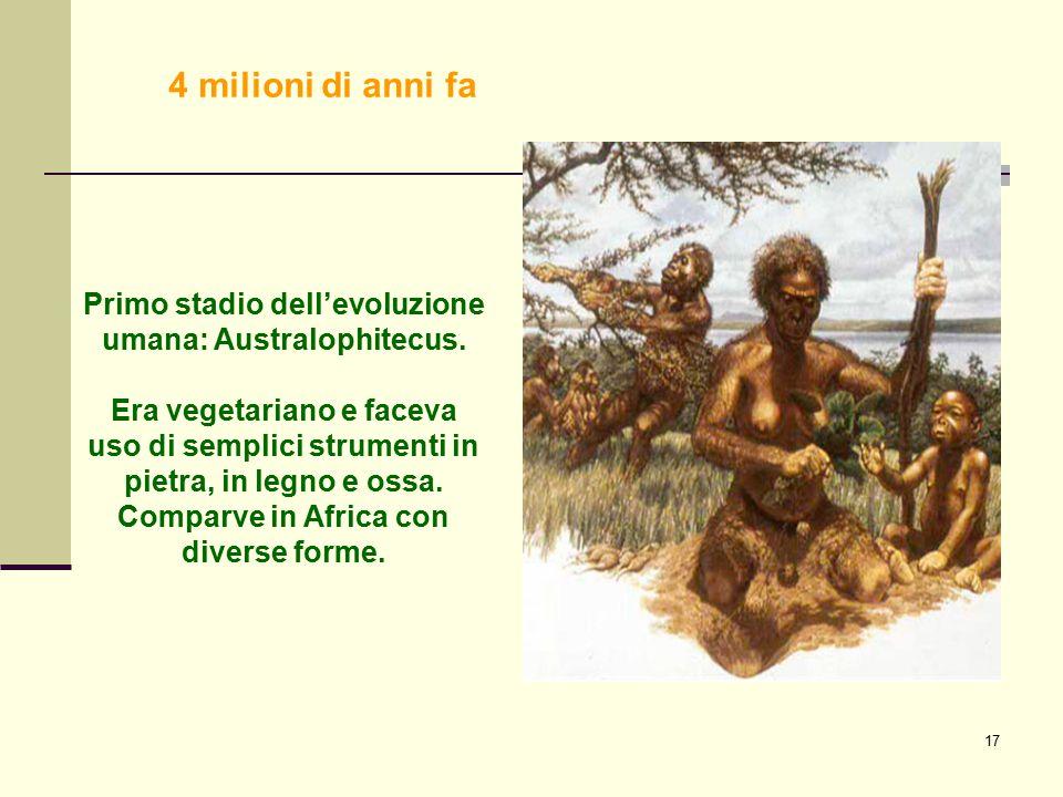 17 Primo stadio dell'evoluzione umana: Australophitecus. Era vegetariano e faceva uso di semplici strumenti in pietra, in legno e ossa. Comparve in Af