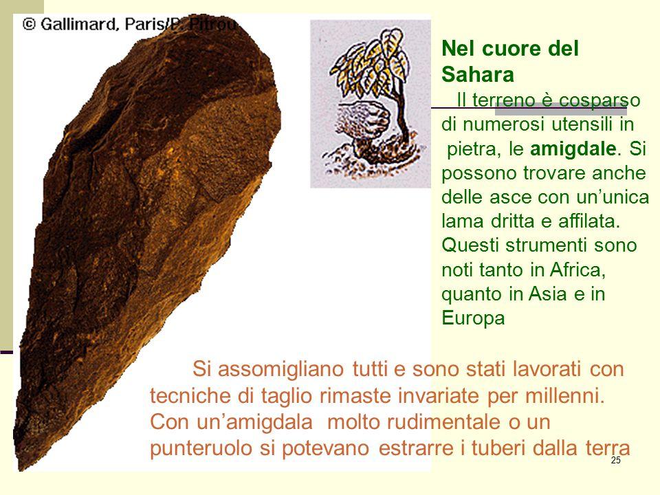 25 Nel cuore del Sahara Il terreno è cosparso di numerosi utensili in pietra, le amigdale. Si possono trovare anche delle asce con un'unica lama dritt