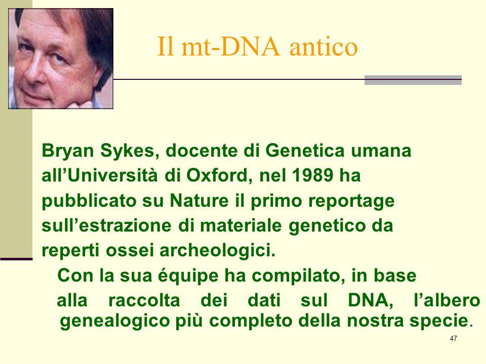 47 Il mt-DNA antico Bryan Sykes, docente di Genetica umana all'Università di Oxford, nel 1989 ha pubblicato su Nature il primo reportage sull'estrazio