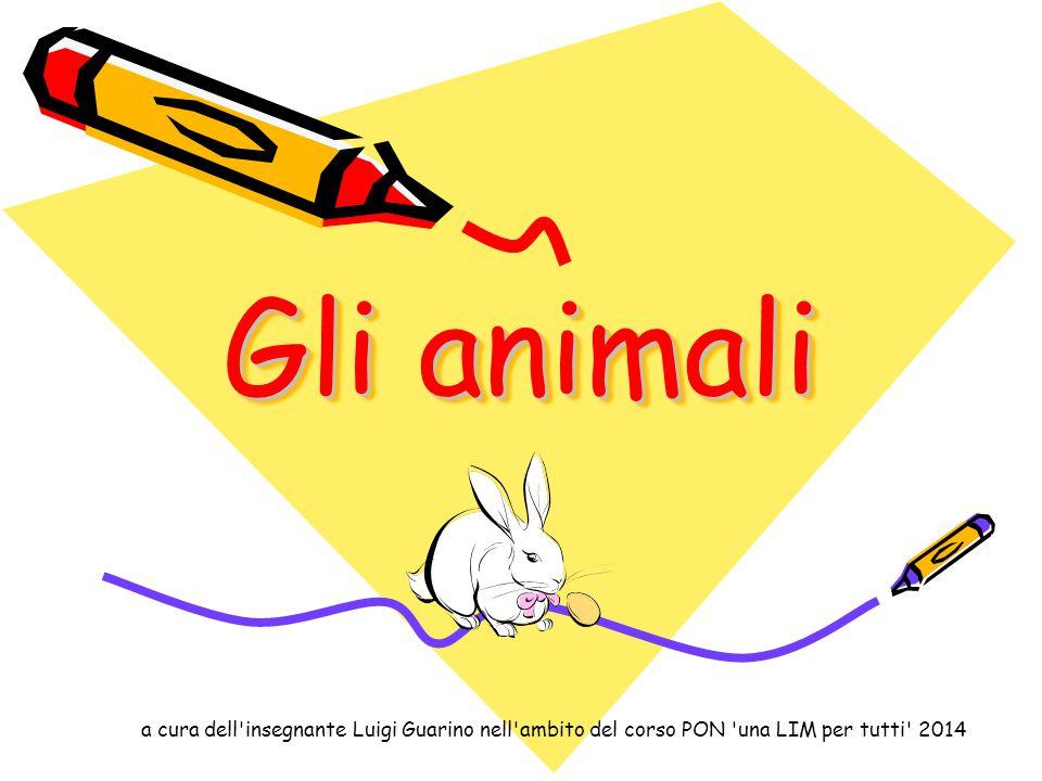 Gli animali a cura dell'insegnante Luigi Guarino nell'ambito del corso PON 'una LIM per tutti' 2014