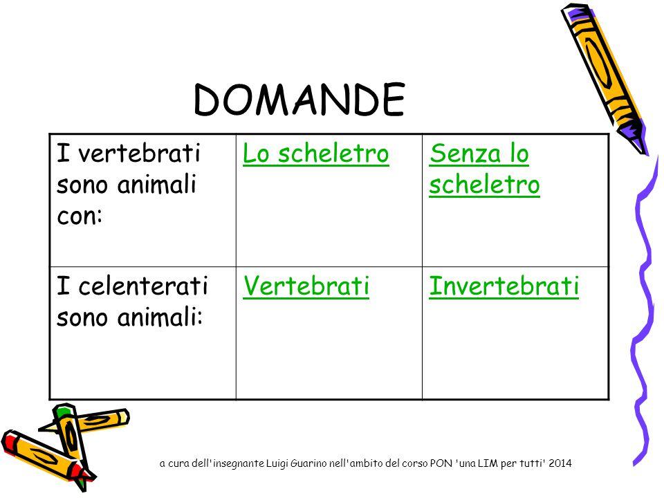 DOMANDE I vertebrati sono animali con: Lo scheletroSenza lo scheletro I celenterati sono animali: VertebratiInvertebrati a cura dell'insegnante Luigi