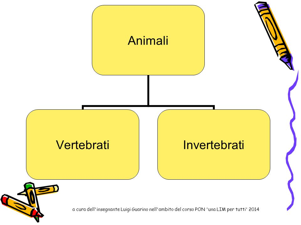 Animali vertebrati Animali vertebrati con scheletro interno Animali vertebrati con scheletro esterno a cura dell insegnante Luigi Guarino nell ambito del corso PON una LIM per tutti 2014