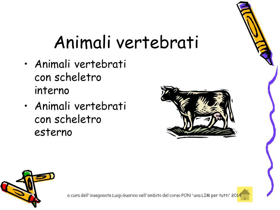 Animali vertebrati Animali vertebrati con scheletro interno Animali vertebrati con scheletro esterno a cura dell'insegnante Luigi Guarino nell'ambito