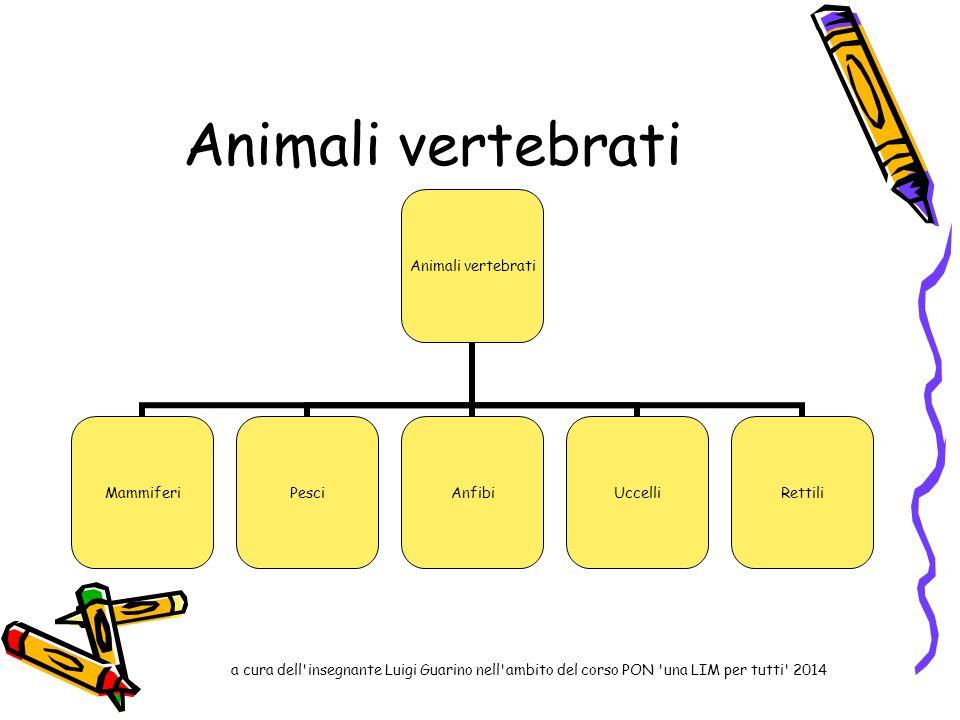 Animali vertebrati MammiferiPesciAnfibiUccelliRettili a cura dell'insegnante Luigi Guarino nell'ambito del corso PON 'una LIM per tutti' 2014