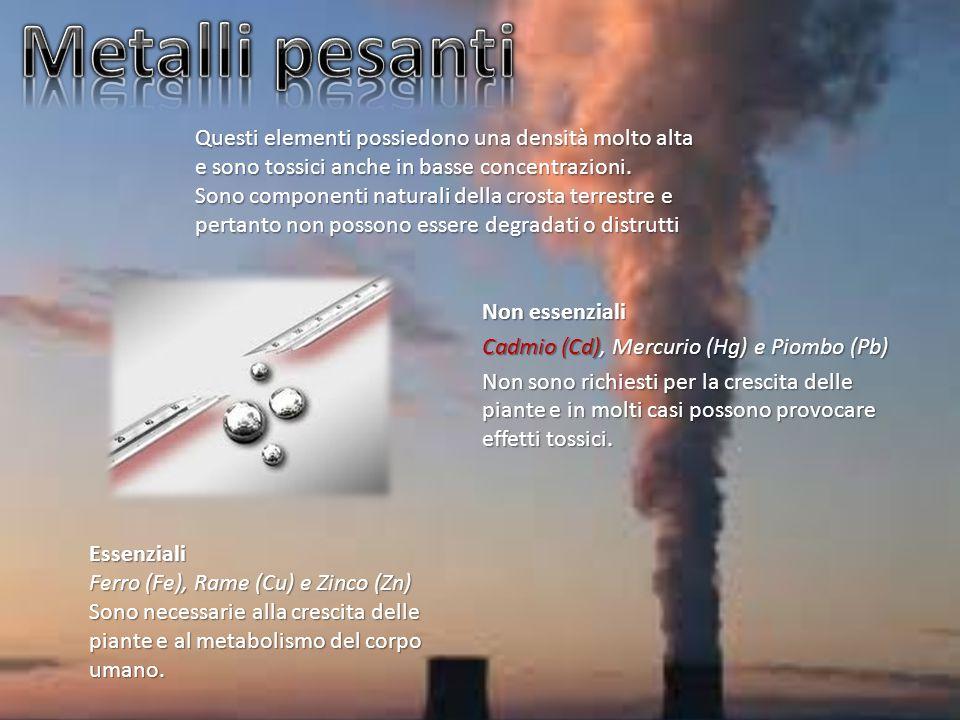 Non essenziali Cadmio (Cd), Mercurio (Hg) e Piombo (Pb) Non sono richiesti per la crescita delle piante e in molti casi possono provocare effetti toss
