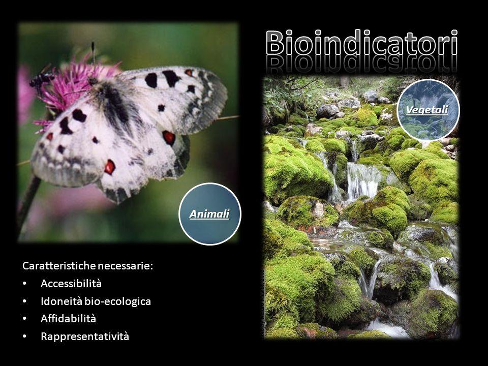 Caratteristiche necessarie: Accessibilità Idoneità bio-ecologica Affidabilità Rappresentatività Animali Vegetali
