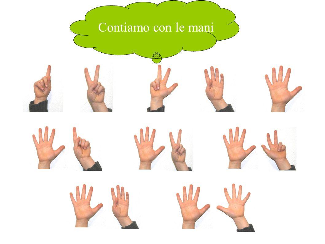 Contiamo con le mani