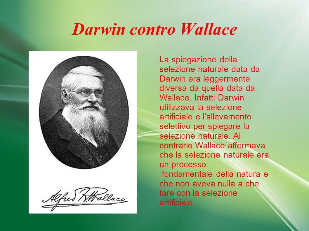 Darwin contro Wallace La spiegazione della selezione naturale data da Darwin era leggermente diversa da quella data da Wallace. Infatti Darwin utilizz