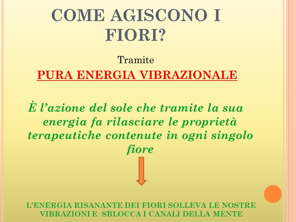 COME AGISCONO I FIORI? Tramite PURA ENERGIA VIBRAZIONALE È l'azione del sole che tramite la sua energia fa rilasciare le proprietà terapeutiche conten