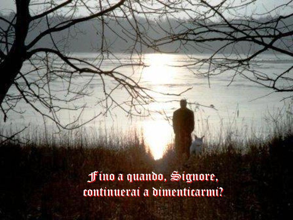 Fino a quando, Signore, continuerai a dimenticarmi? Fino a quando, Signore, continuerai a dimenticarmi?