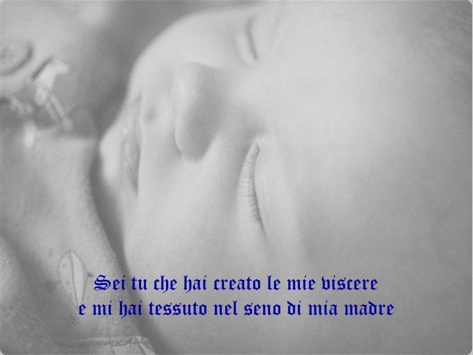 Sei tu che hai creato le mie viscere e mi hai tessuto nel seno di mia madre