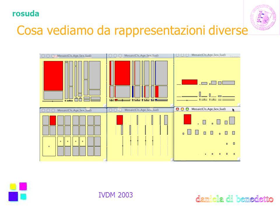 rosuda IVDM 2003 Cosa vediamo da rappresentazioni diverse