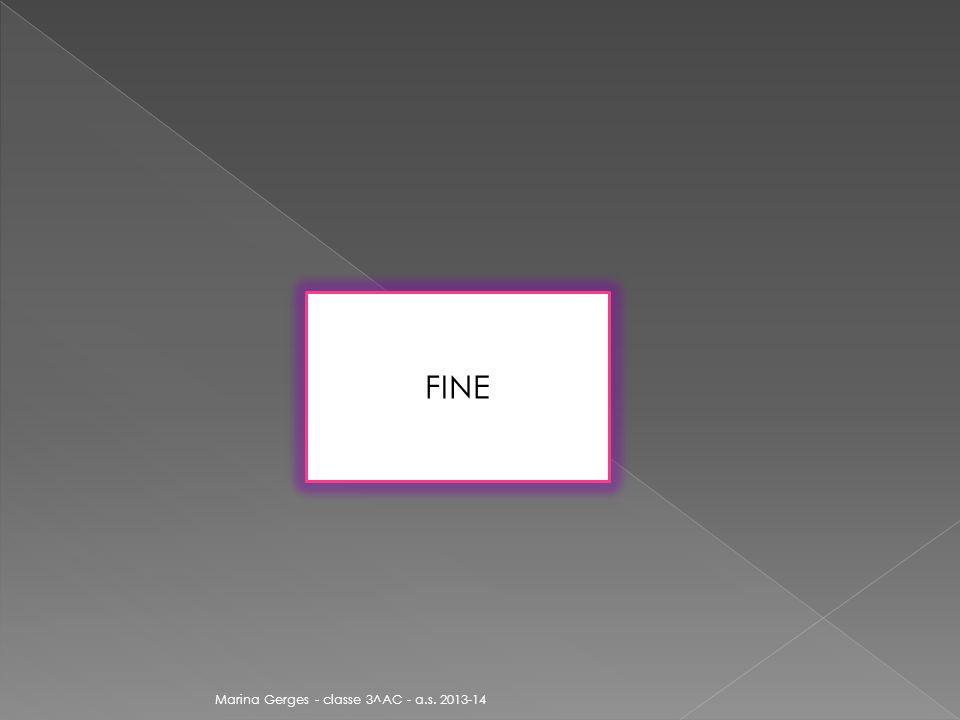 FINE Marina Gerges - classe 3^AC - a.s. 2013-14