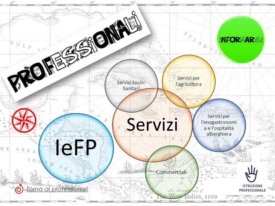 Servizi Servizi Socio- Sanitari Servizi per l'agricoltura Servizi per l'enogastronomi a e l'ospitalità alberghiera Commerciali IeFP Torna ai professionali