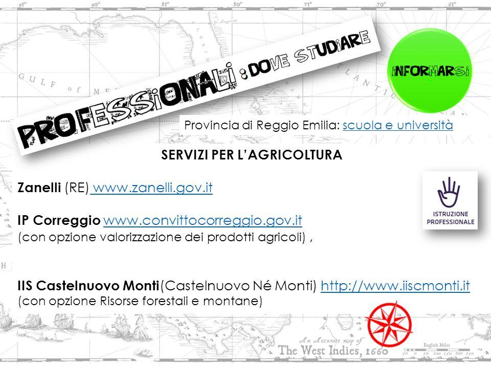 SERVIZI PER L'AGRICOLTURA Zanelli (RE) www.zanelli.gov.it www.zanelli.gov.it IP Correggio www.convittocorreggio.gov.it www.convittocorreggio.gov.it (con opzione valorizzazione dei prodotti agricoli), IIS Castelnuovo Monti (Castelnuovo Né Monti) http://www.iiscmonti.ithttp://www.iiscmonti.it (con opzione Risorse forestali e montane) Provincia di Reggio Emilia: scuola e universitàscuola e università