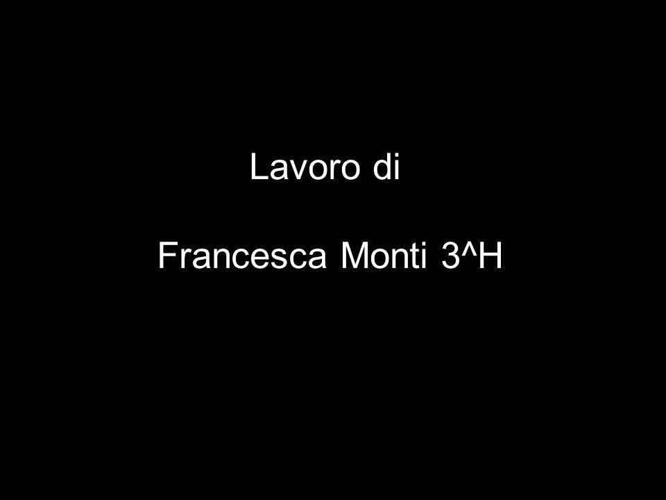 Lavoro di Francesca Monti 3^H