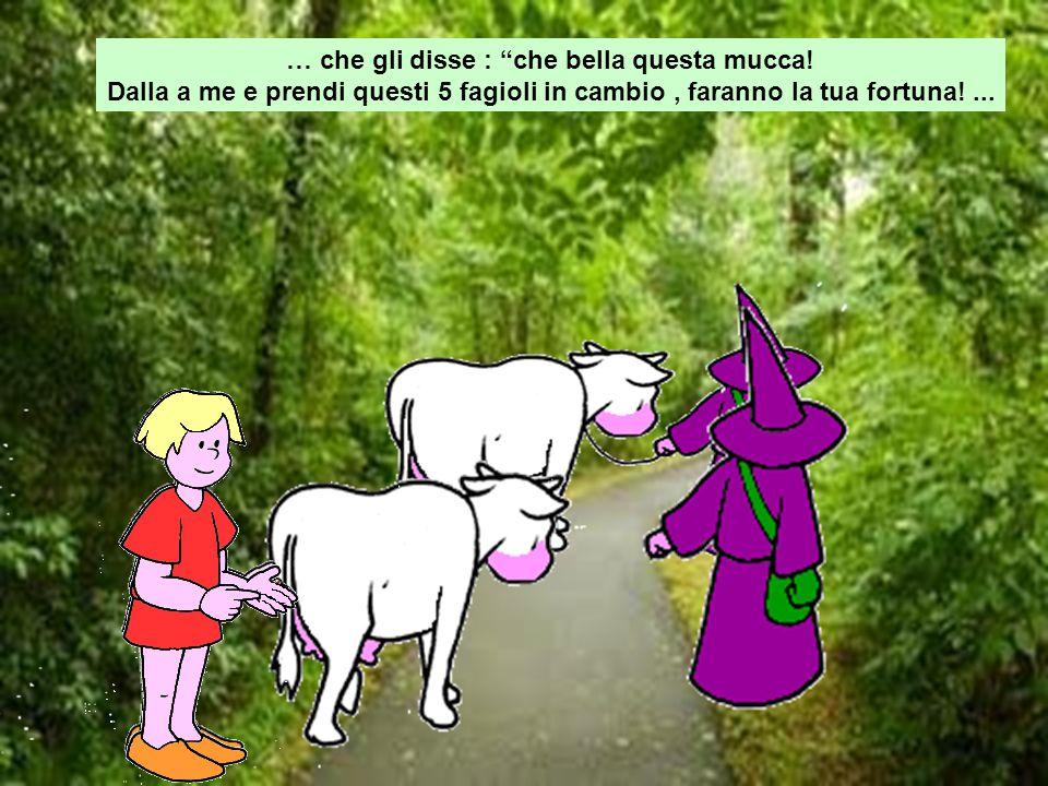 """… che gli disse : """"che bella questa mucca! Dalla a me e prendi questi 5 fagioli in cambio, faranno la tua fortuna!..."""