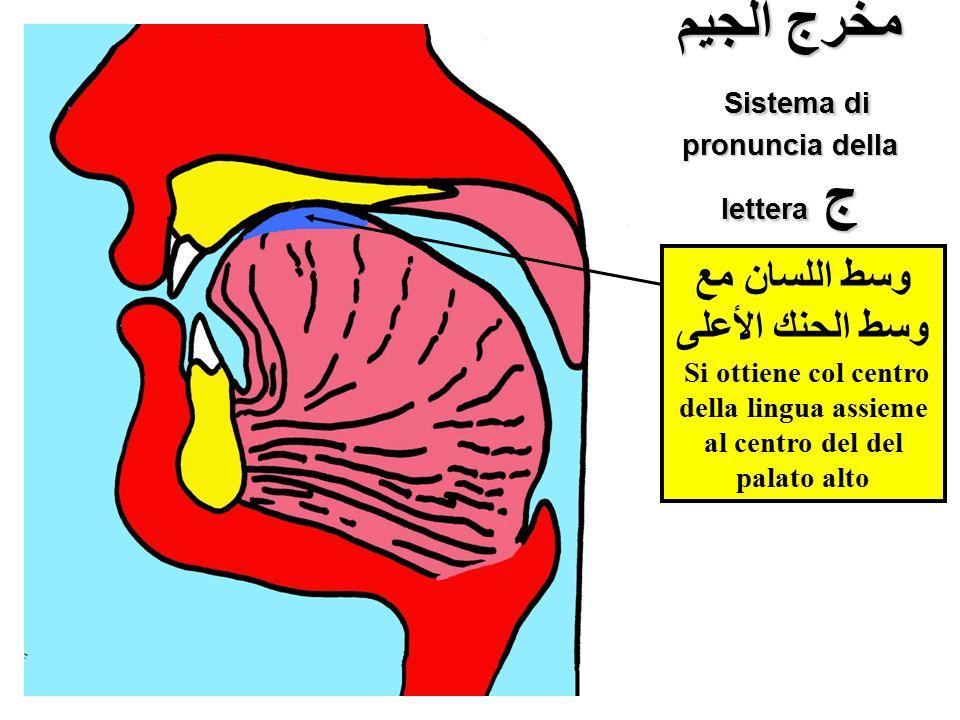 مخرج الجيم Sistema di pronuncia della lettera ج وسط اللسان مع وسط الحنك الأعلى Si ottiene col centro della lingua assieme al centro del del palato alt