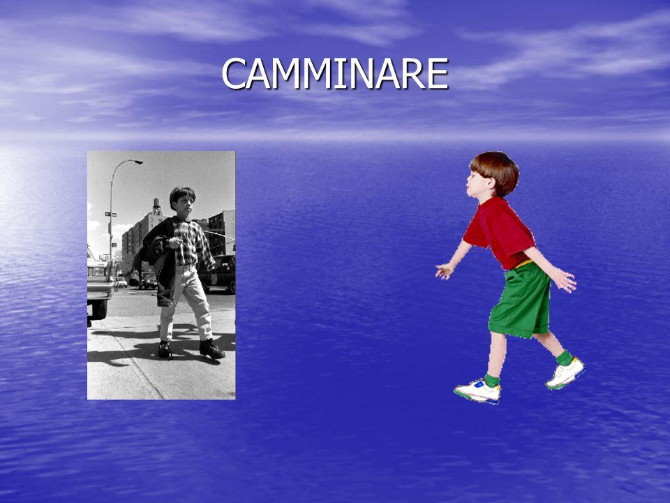Schemi motori di base: Camminare Camminare Correre Correre Saltare Saltare Arrampicarsi Arrampicarsi Strisciare Strisciare Lanciare Lanciare Rotolare