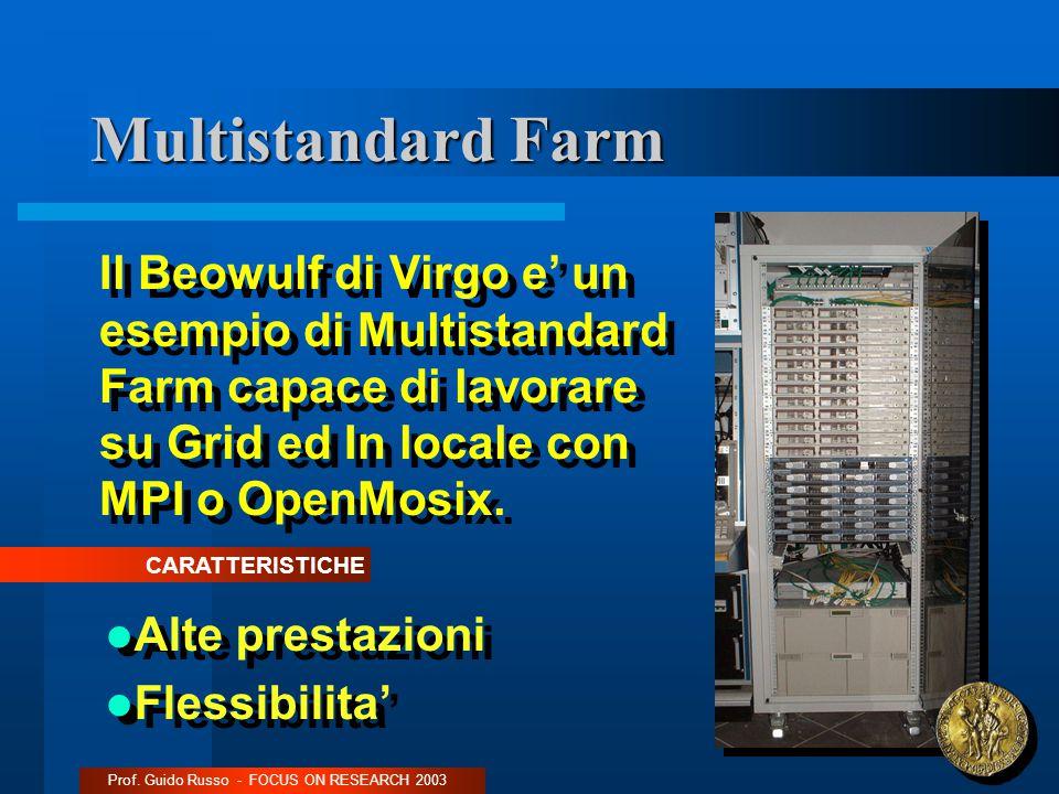 Multistandard Farm Prof.
