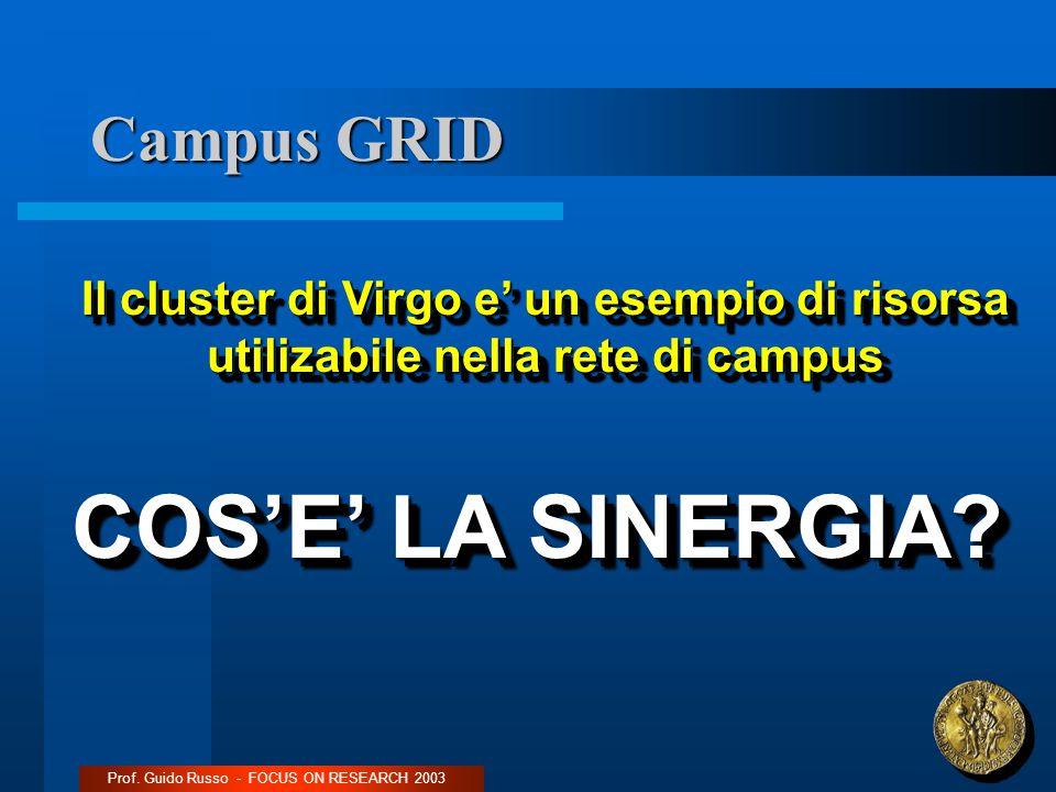 Campus GRID Prof. Guido Russo - FOCUS ON RESEARCH 2003 Il cluster di Virgo e' un esempio di risorsa utilizabile nella rete di campus COS'E' LA SINERGI