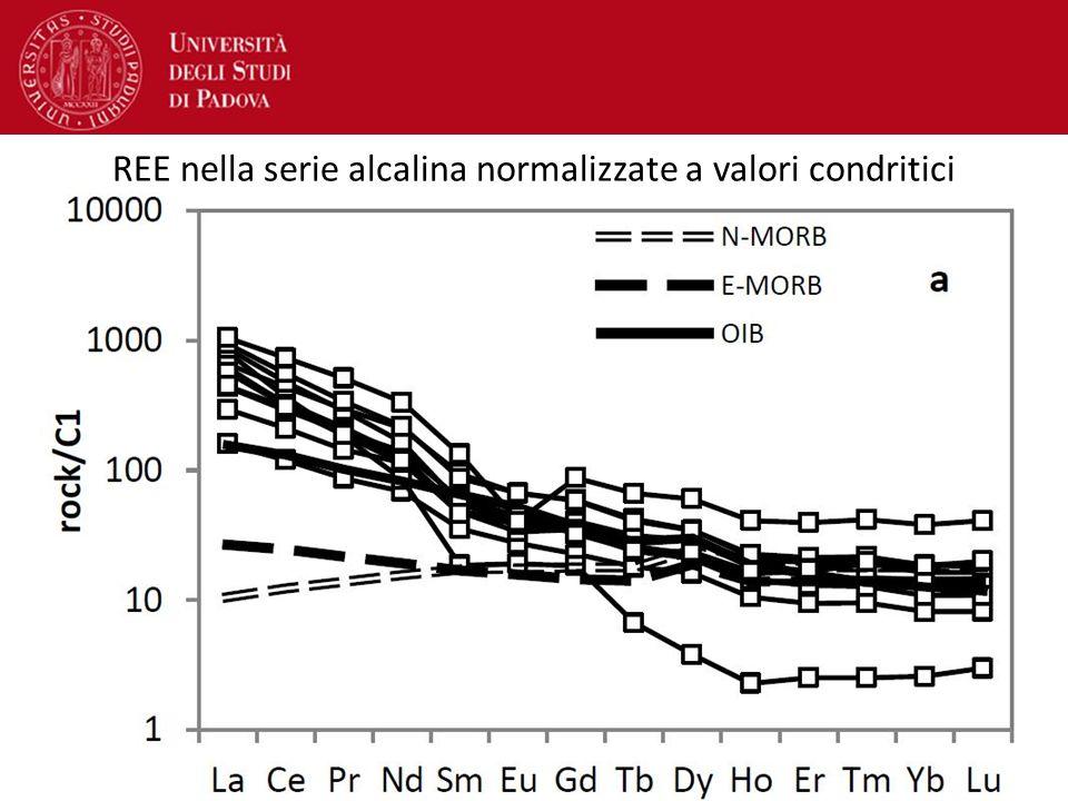 REE nella serie alcalina normalizzate a valori condritici