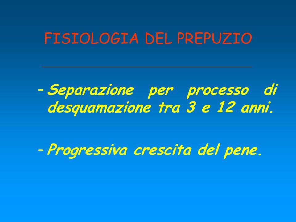 FISIOLOGIA DEL PREPUZIO –Separazione per processo di desquamazione tra 3 e 12 anni. –Progressiva crescita del pene.