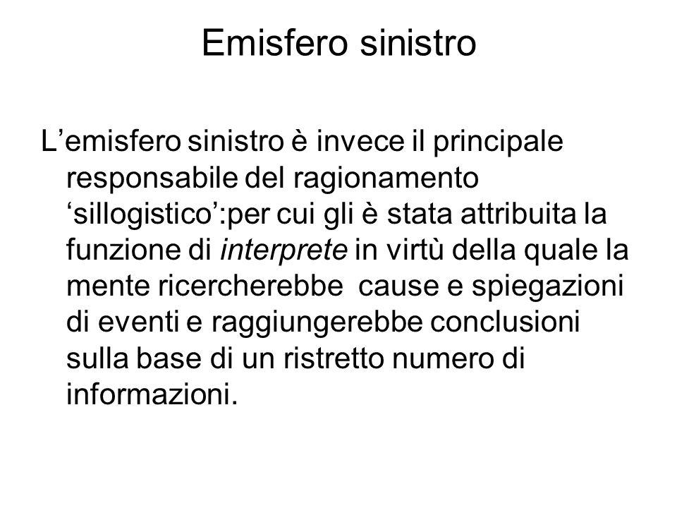 Emisfero sinistro L'emisfero sinistro è invece il principale responsabile del ragionamento 'sillogistico':per cui gli è stata attribuita la funzione d