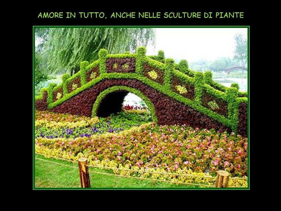 AMORE IN TUTTO, ANCHE NELLE SCULTURE DI PIANTE