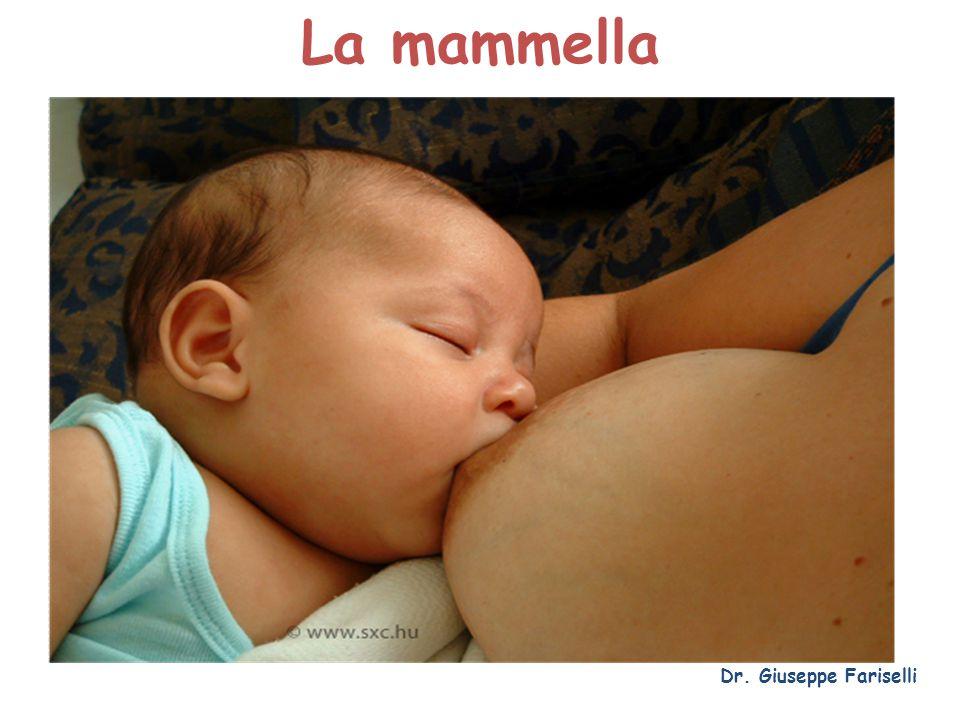 Malattia di Paget del capezzolo Dr. Giuseppe Fariselli