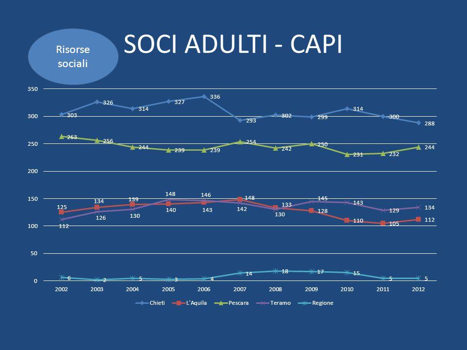 SOCI ADULTI - CAPI Risorse sociali