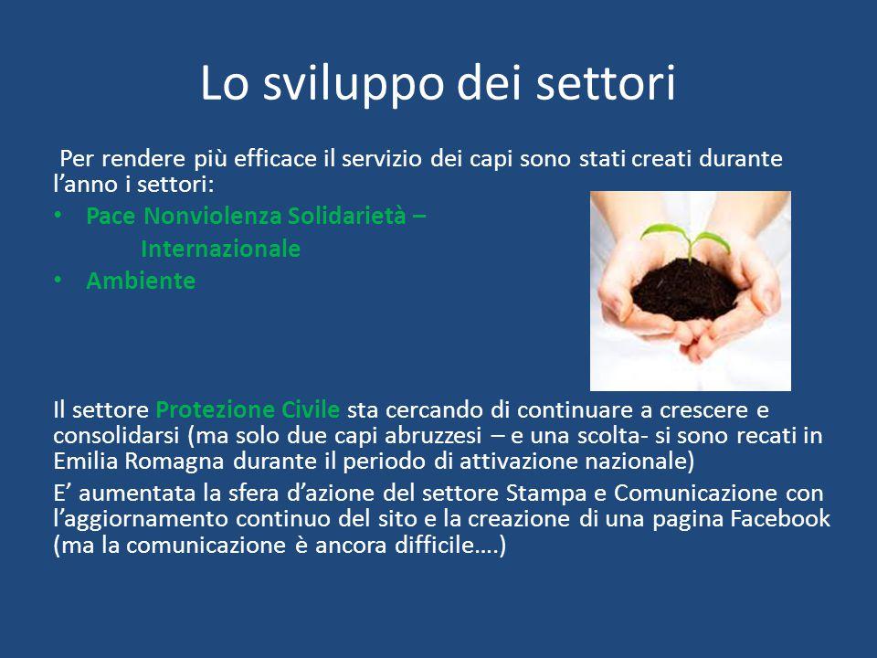 Lo sviluppo dei settori Per rendere più efficace il servizio dei capi sono stati creati durante l'anno i settori: Pace Nonviolenza Solidarietà – Internazionale Ambiente Il settore Protezione Civile sta cercando di continuare a crescere e consolidarsi (ma solo due capi abruzzesi – e una scolta- si sono recati in Emilia Romagna durante il periodo di attivazione nazionale) E' aumentata la sfera d'azione del settore Stampa e Comunicazione con l'aggiornamento continuo del sito e la creazione di una pagina Facebook (ma la comunicazione è ancora difficile….)