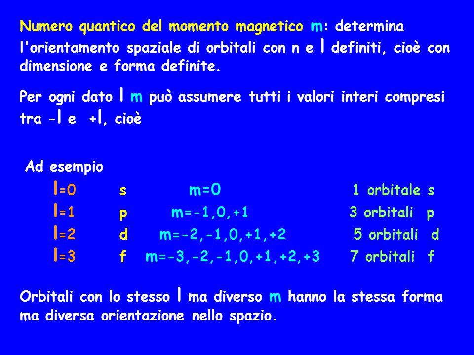 Numero quantico del momento magnetico m : determina l'orientamento spaziale di orbitali con n e l definiti, cioè con dimensione e forma definite. Per