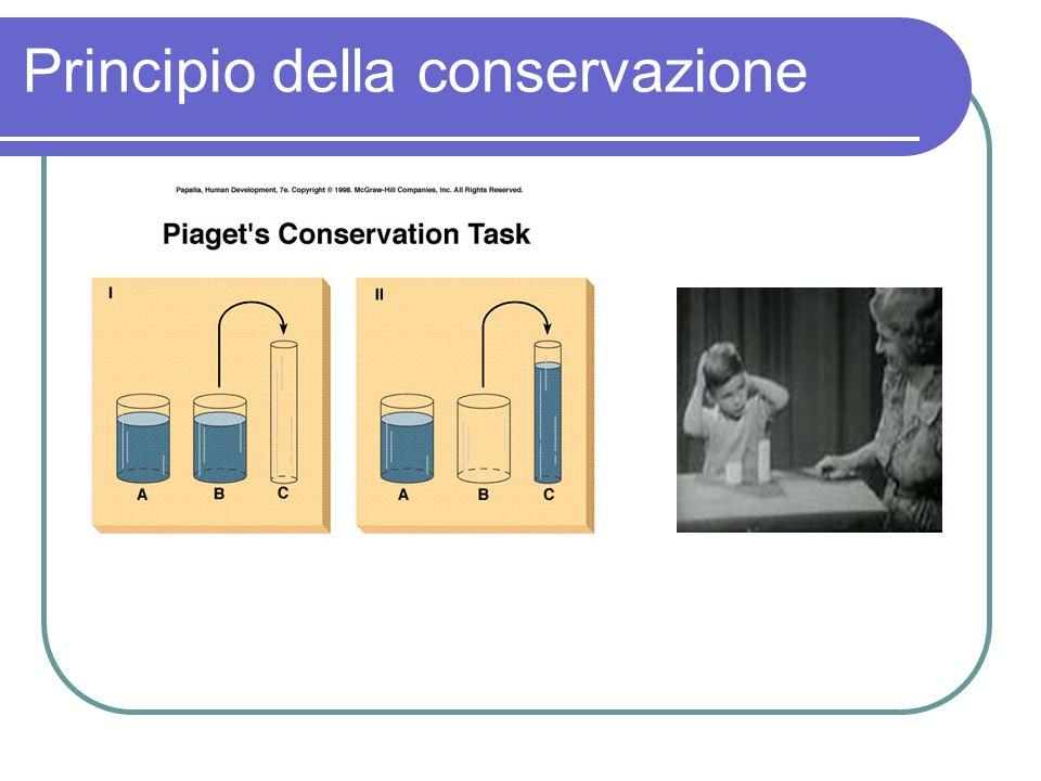 Principio della conservazione