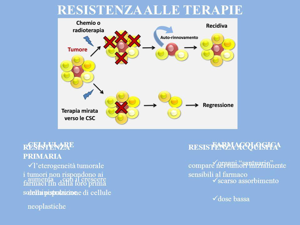 RESISTENZA ALLE TERAPIE ANTITUMORALI FARMACOLOGICA organi santuario scarso assorbimento dose bassa CELLULARE l'eterogeneità tumorale aumenta con il crescere della popolazione di cellule neoplastiche RESISTENZA PRIMARIA i tumori non rispondono ai farmaci fin dalla loro prima somministrazione RESISTENZA ACQUISITA compare nei tumori inizialmente sensibili al farmaco