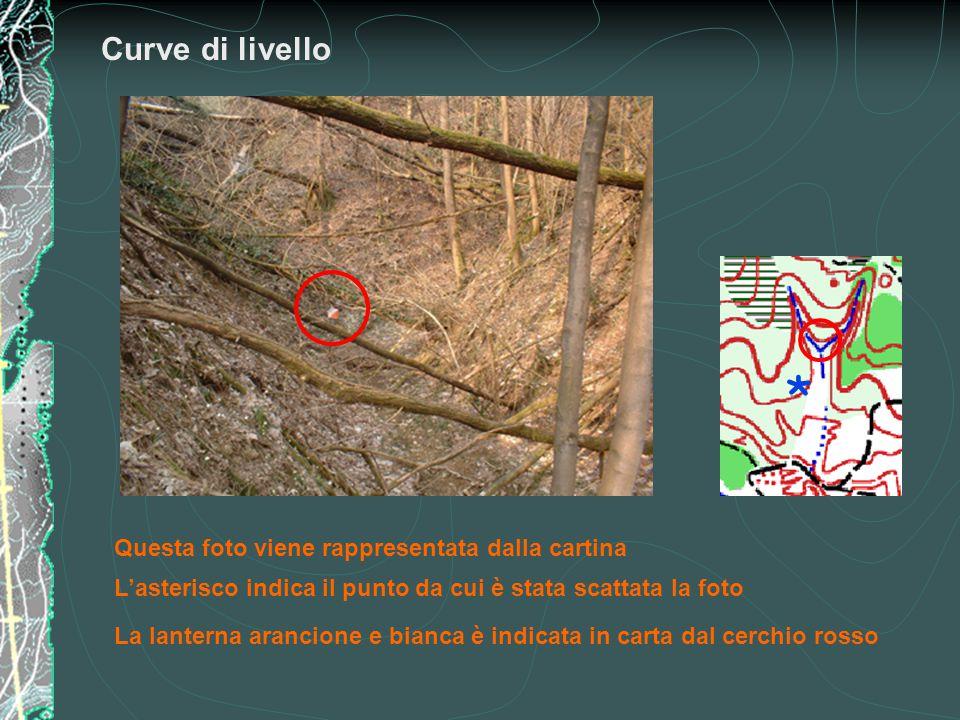 Curve di livello * Questa foto viene rappresentata dalla cartina L'asterisco indica il punto da cui è stata scattata la foto La lanterna arancione e b