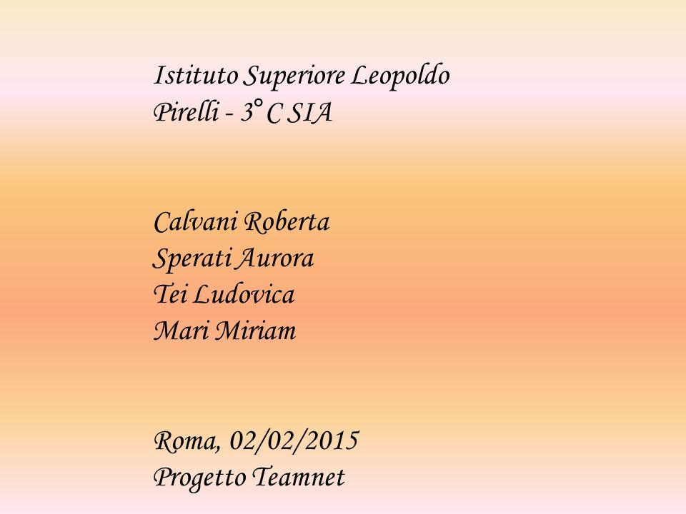 Istituto Superiore Leopoldo Pirelli - 3°C SIA Calvani Roberta Sperati Aurora Tei Ludovica Mari Miriam Roma, 02/02/2015 Progetto Teamnet