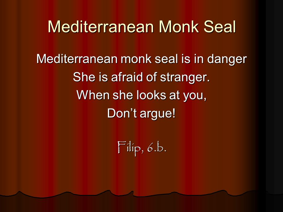 Mediterranean Monk Seal Mediterranean monk seal is in danger She is afraid of stranger. When she looks at you, Don't argue! Filip, 6.b.