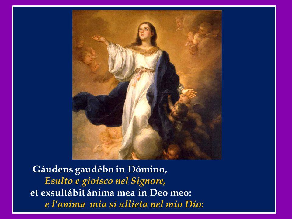 Gáudens gaudébo in Dómino, Esulto e gioisco nel Signore, et exsultábit ánima mea in Deo meo: e l'anima mia si allieta nel mio Dio: Gáudens gaudébo in Dómino, Esulto e gioisco nel Signore, et exsultábit ánima mea in Deo meo: e l'anima mia si allieta nel mio Dio: